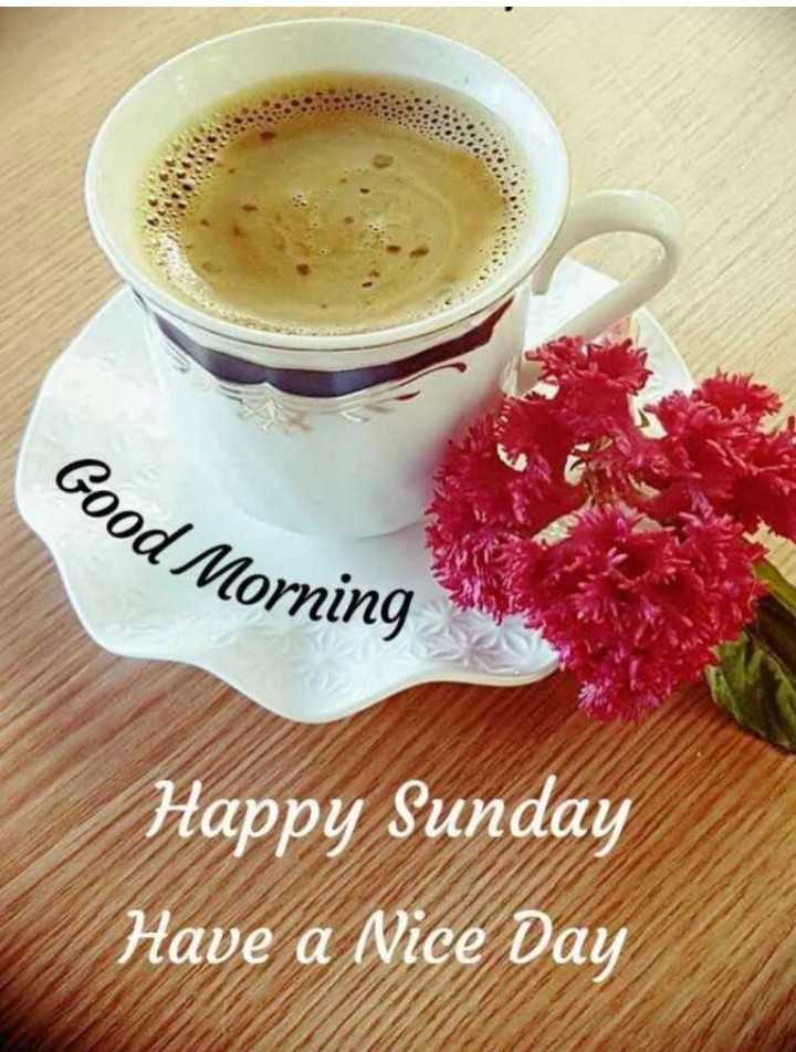 Good Morning - Good Morning Happy Sunday Have a Nice Day - ShareChat