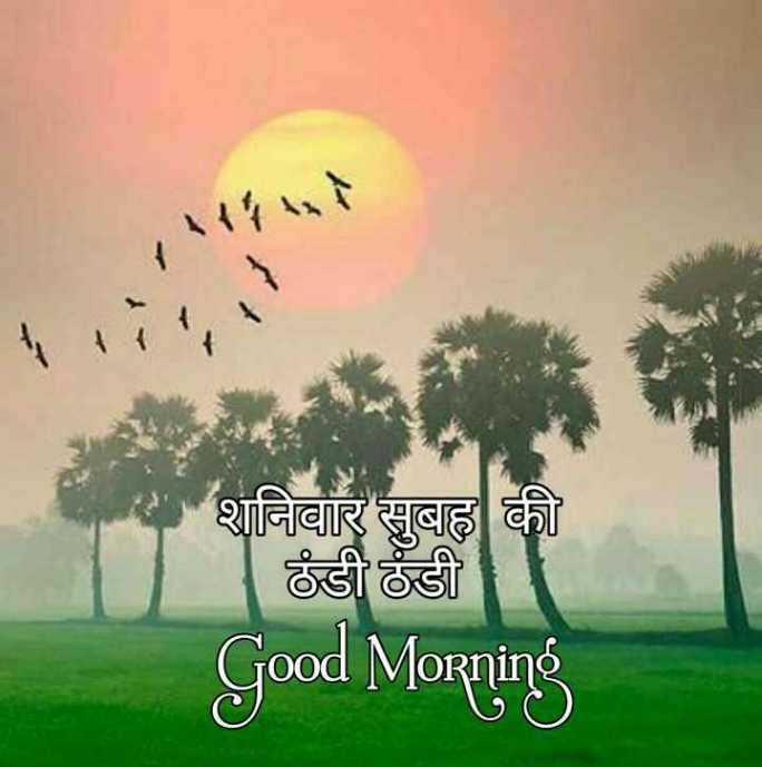 🌞 Good Morning🌞 - शनिवार सुबह की ठंडी ठंडी । Good Morning - ShareChat