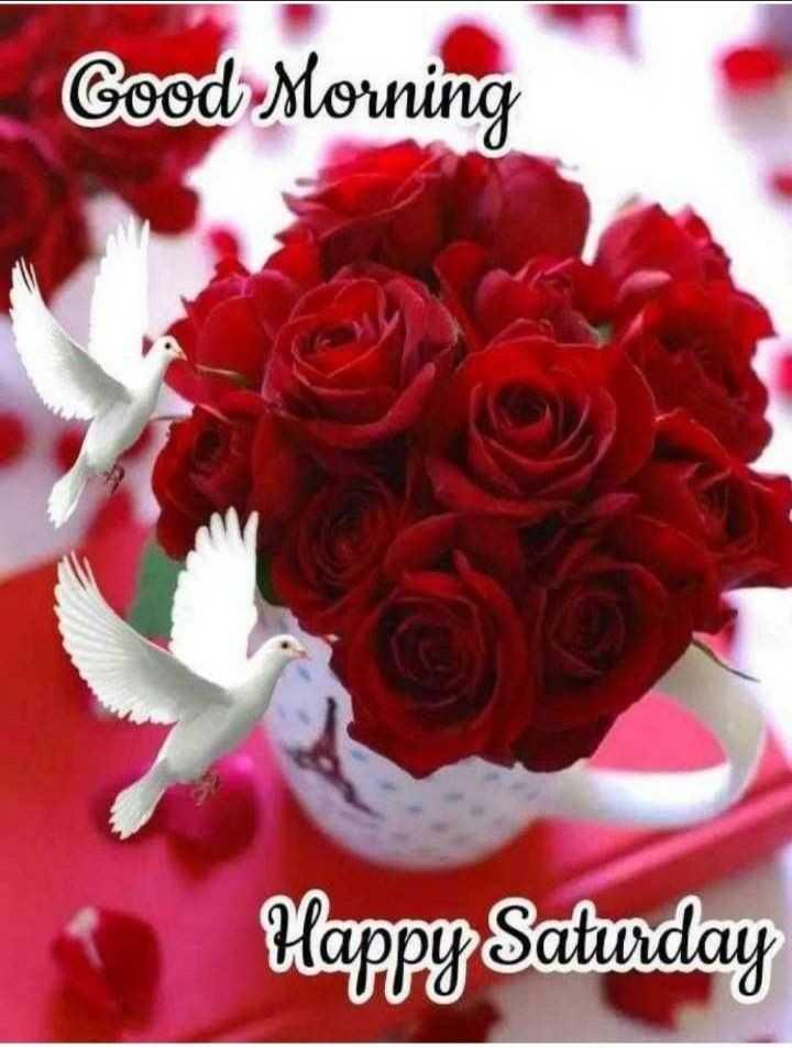 🌞 Good Morning🌞 - Good Morning Happy Saturday - ShareChat