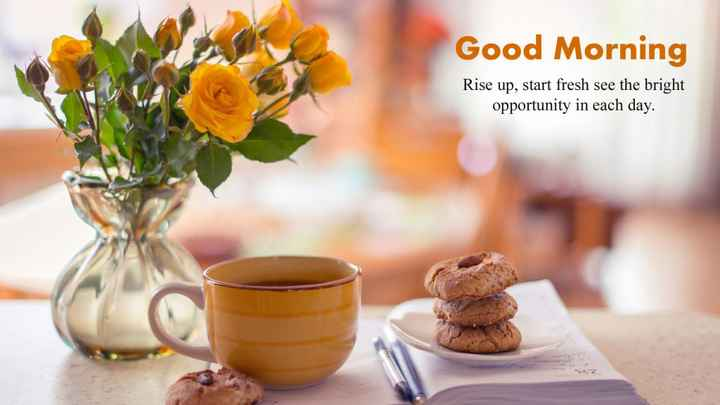 🌞Good Morning🌞 - Good Morning Rise up , start fresh see the bright opportunity in each day . - ShareChat