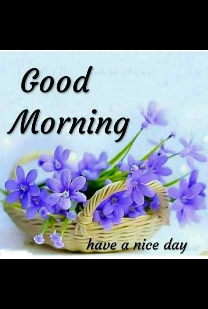 🌞 Good Morning🌞 - Good Morning have a nice day - ShareChat