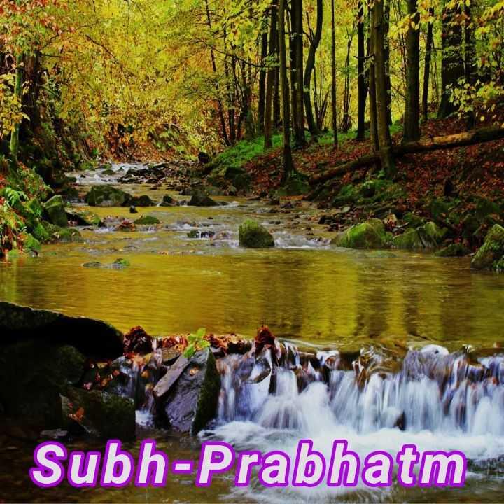 🌞 Good Morning🌞 - Subh - Prabhatm - ShareChat