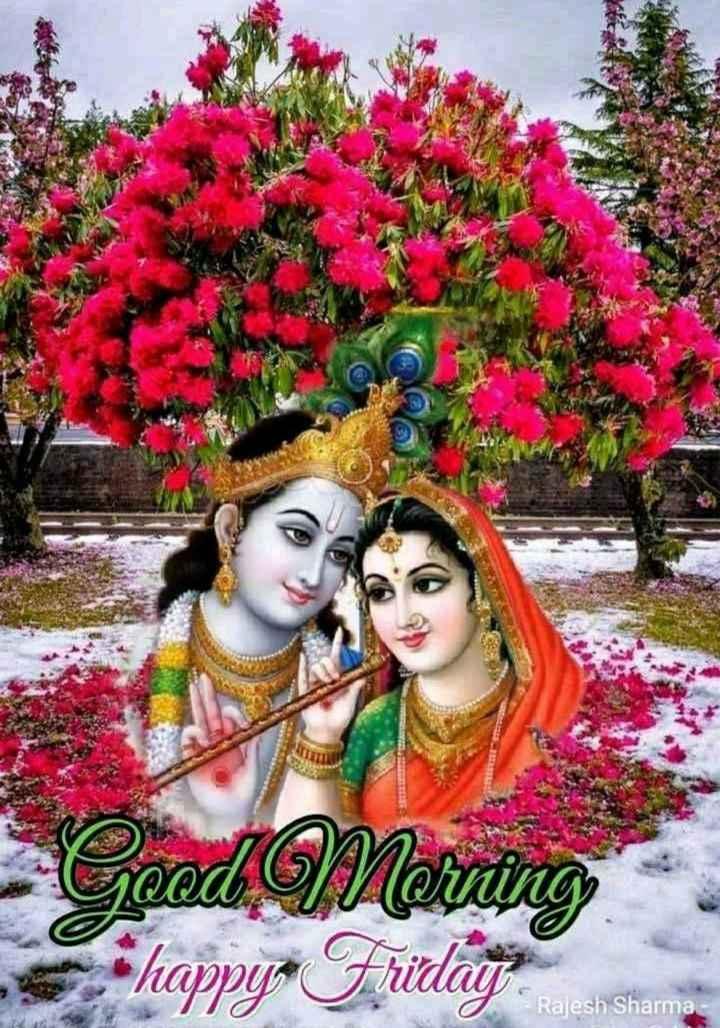 🌞Good Morning🌞 - Ceed Mering happy - Friday Rajesh Sharma - ShareChat