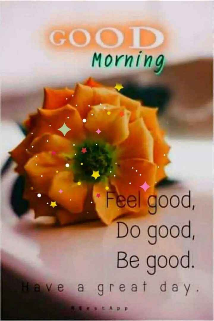 🌞 Good Morning🌞 - GOOD Morning Feel good , Do good , Be good . Have a great day . 5 E APP - ShareChat