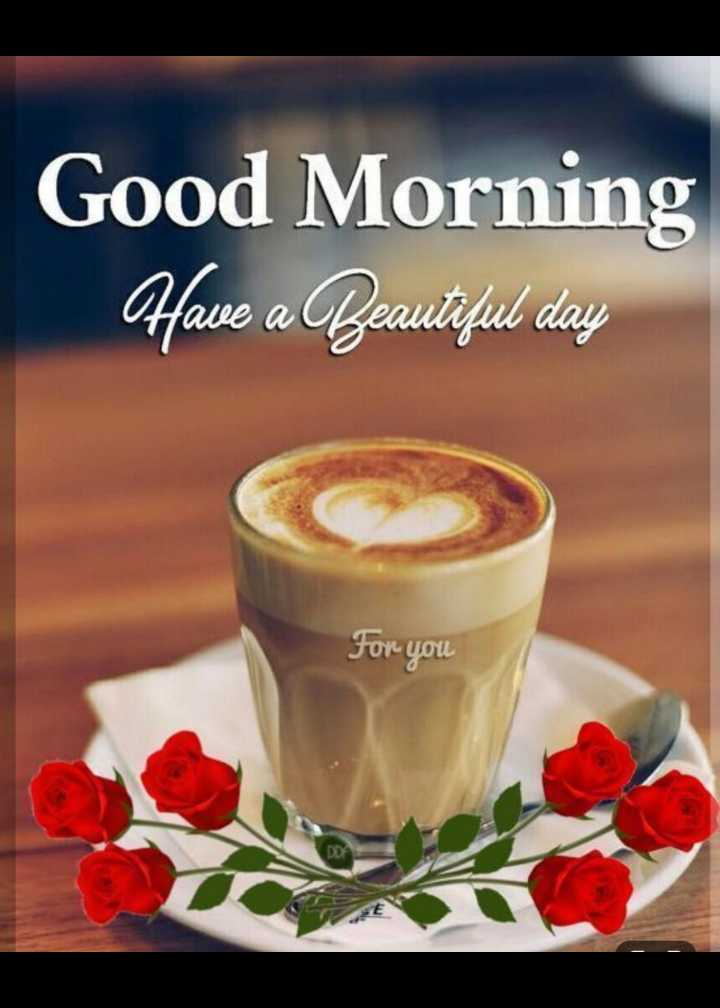 🌞 Good Morning🌞 - Good Morning Have a Beautiful day For you - ShareChat
