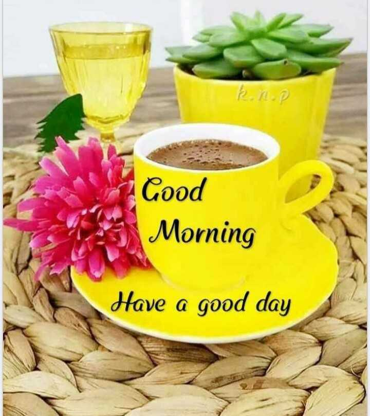 🌞Good Morning🌞 - RRP Cood Morning Have a good day - ShareChat