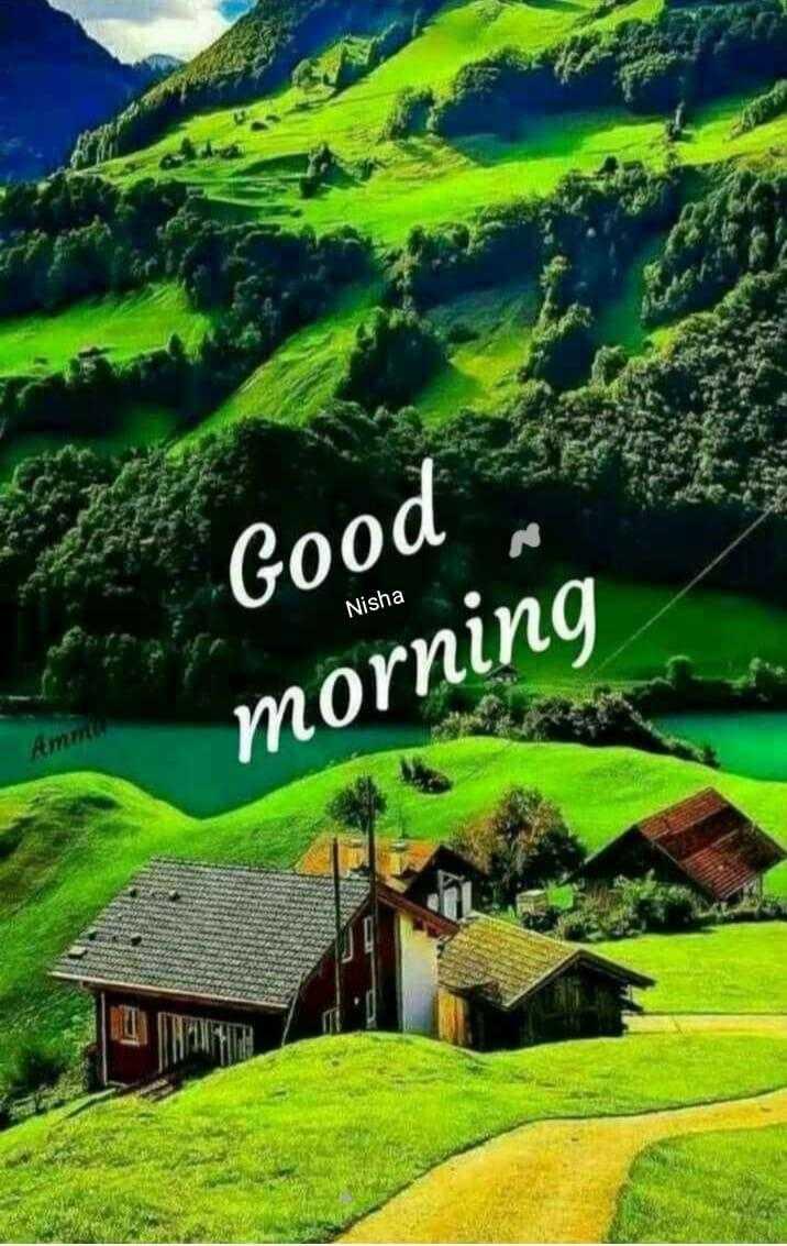 🌞Good Morning🌞 - Good Nisha morning - ShareChat