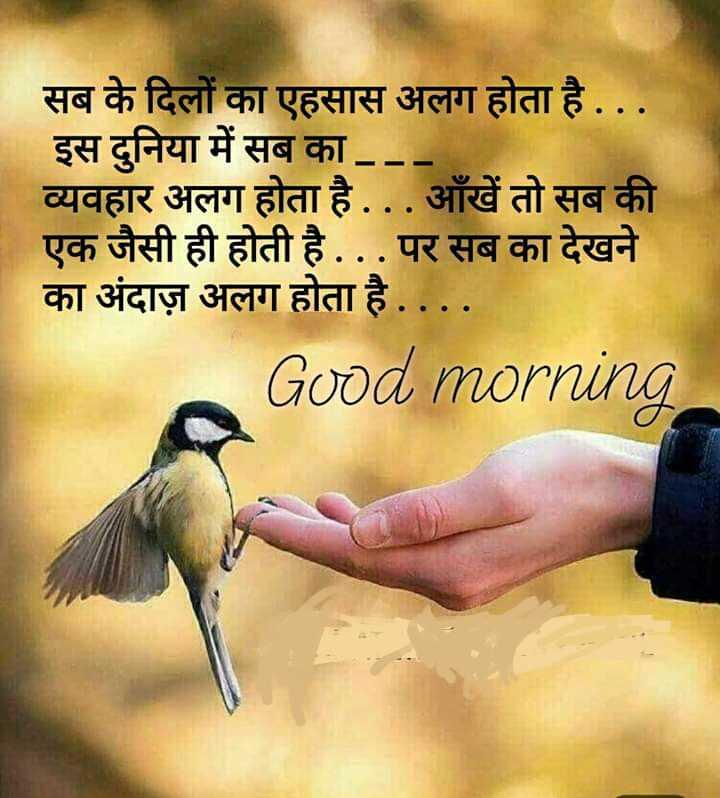 🌞 Good Morning🌞 - सब के दिलों का एहसास अलग होता है . . . इस दुनिया में सब का . . व्यवहार अलग होता है . . . आँखें तो सब की एक जैसी ही होती है . . . पर सब का देखने का अंदाज़ अलग होता है . . . . Good morning - ShareChat