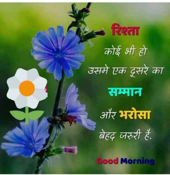 🌞 Good Morning🌞 - रिश्ता कोई भी हो उसमे एक दूसरे का सम्मान और भरोसा बेहद जरूरी है . Good Morning - ShareChat