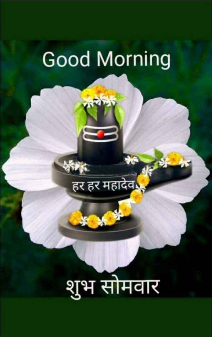 🌞 Good Morning🌞 - Good Morning हर हर महादेव शुभ सोमवार - ShareChat