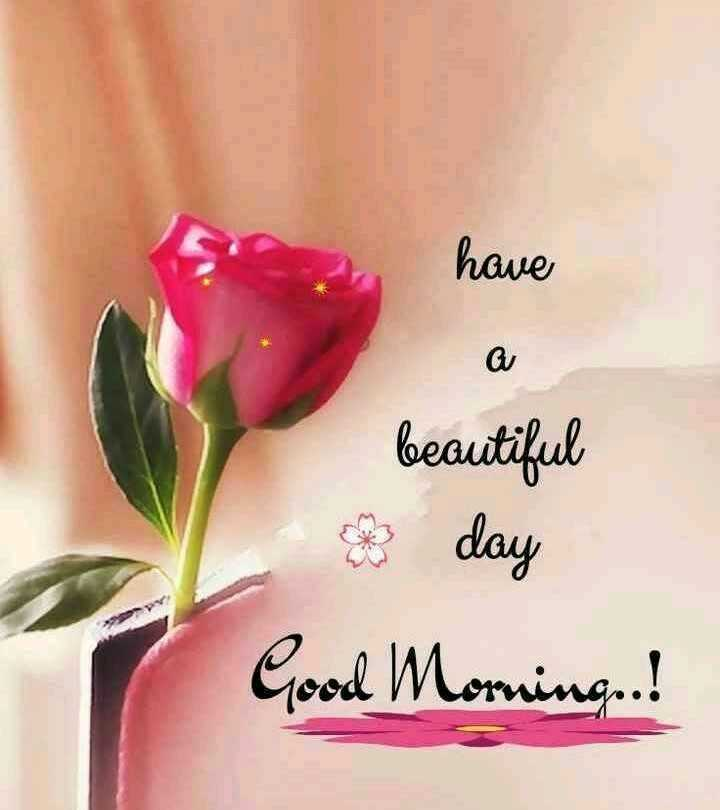 🌞 Good Morning🌞 - have beautiful e day Good Morning ! - ShareChat