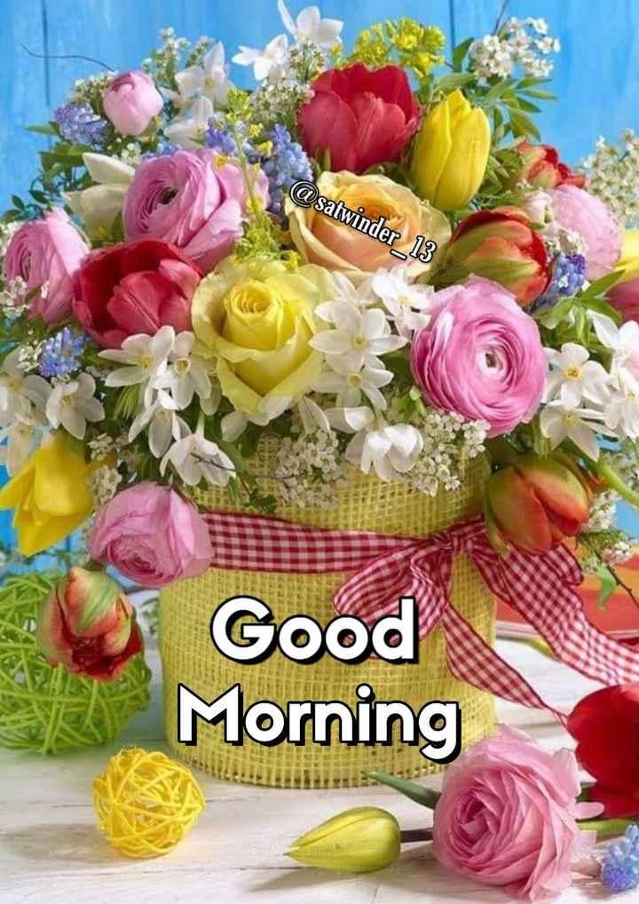 🌞 Good Morning🌞 - @ satwinder _ 13 Good Morning - ShareChat