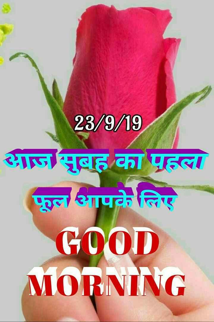 🌞 Good Morning🌞 - 23 / 9 / 19 आज सुबह का पहला फूल आपके लिए GOOD MORNING - ShareChat