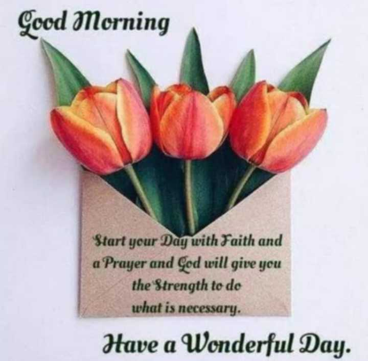 🌞 Good Morning🌞 - Good Morning Start your Day with Faith and a Prayer and God will give you the Strength to do what is necessary Have a Wonderful Day . - ShareChat