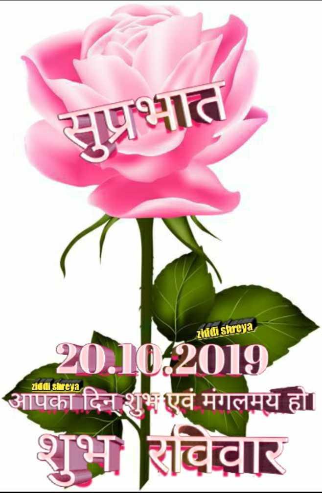 🌞 Good Morning🌞 - सुप्रभात ziddi shreya ziddi shreya 20 . 11 . 2019 आपका दिन शुभएवं मंगलमय हो । शुभ रविवार - ShareChat