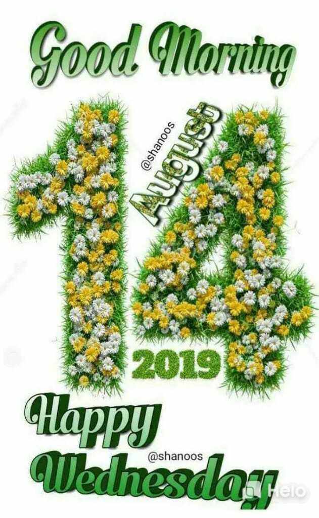 🌞Good Morning🌞 - Good Morning @ shanoos INA VALID MA 2019 Happy Wehesday @ shanoos - ShareChat