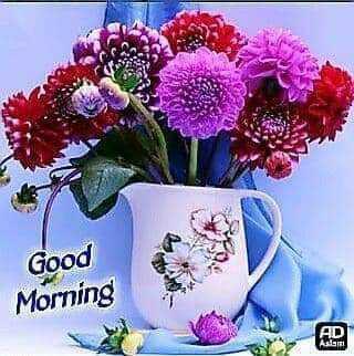 🌞 Good Morning🌞 - Good Morning AD Aslam - ShareChat