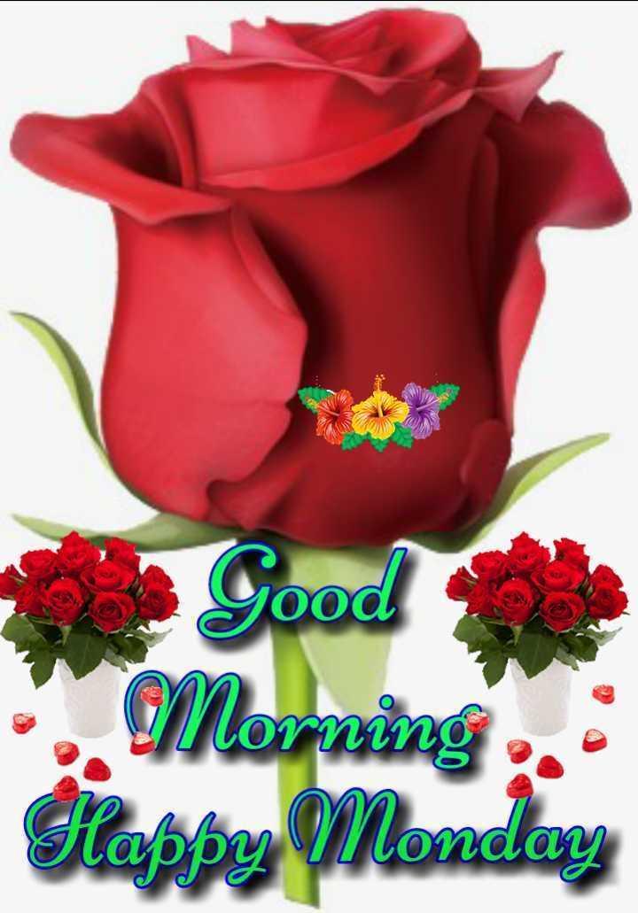 🌞 Good Morning🌞 - Morning Happy Monday - ShareChat