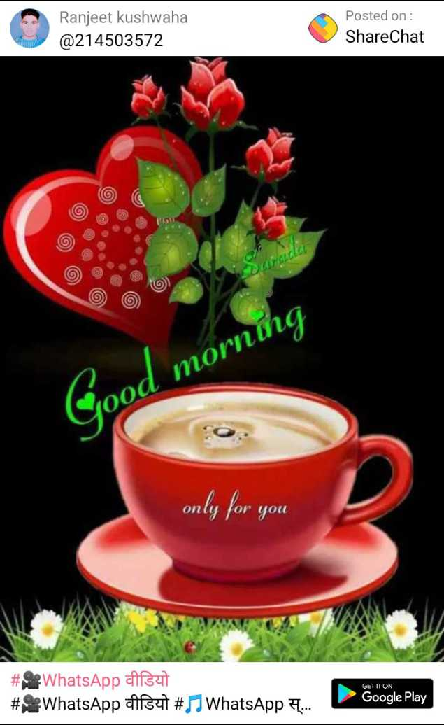 🌞 Good Morning🌞 - Ranjeet kushwaha @ 214503572 Posted on : ShareChat reicle bod morning only for you GET IT ON # WhatsApp aisut # WhatsApp asut # WhatsApp . Google Play - ShareChat