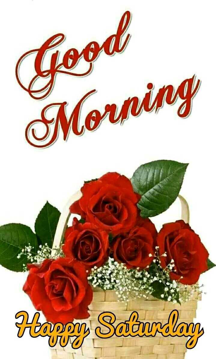 🌞Good Morning🌞 - Good Morning Happy Saturday VVU - ShareChat