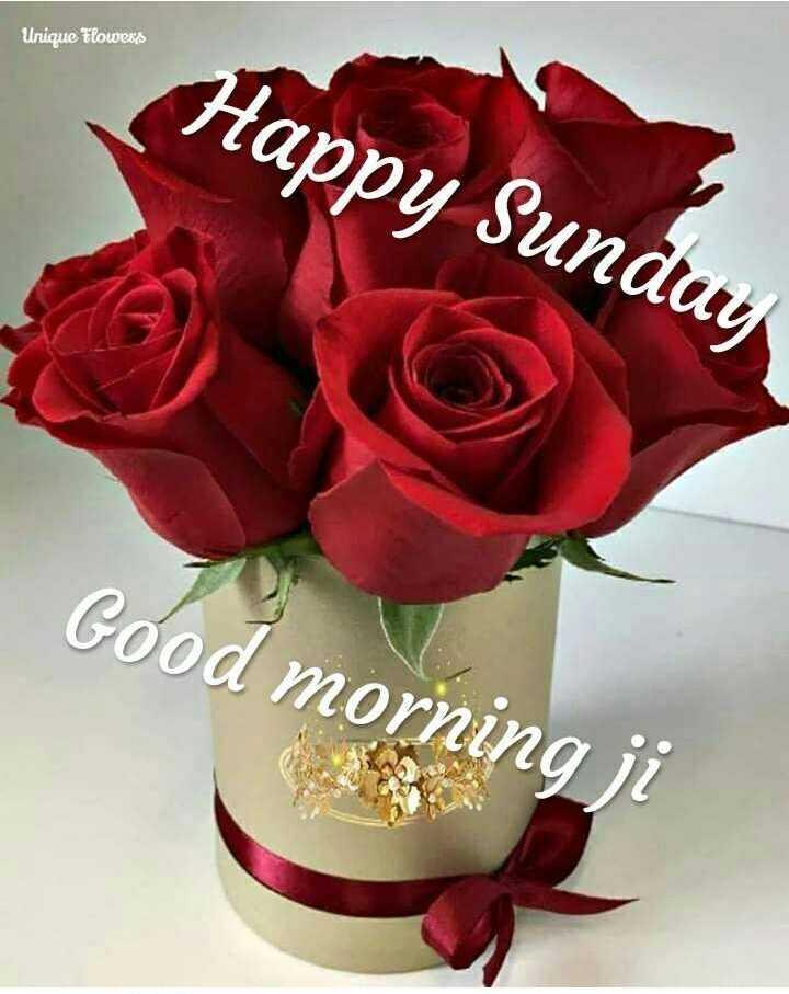 🌞Good Morning🌞 - Unique Flowers Happy Sunday Good morning ji - ShareChat