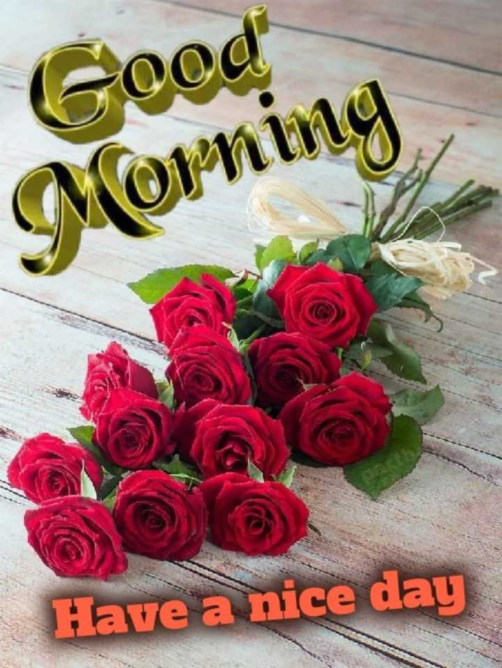 🌞 Good Morning🌞 - Good Corning Have a nice day - ShareChat