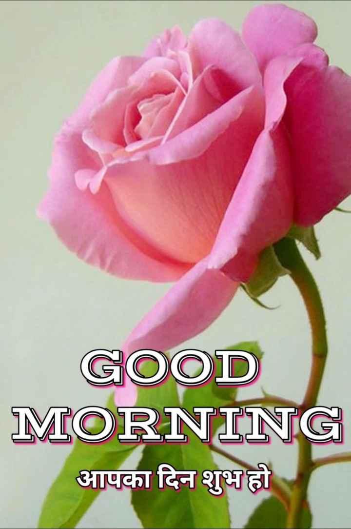 🌞 Good Morning🌞 - GOOD MORNING आपका दिन शुभ हो - ShareChat