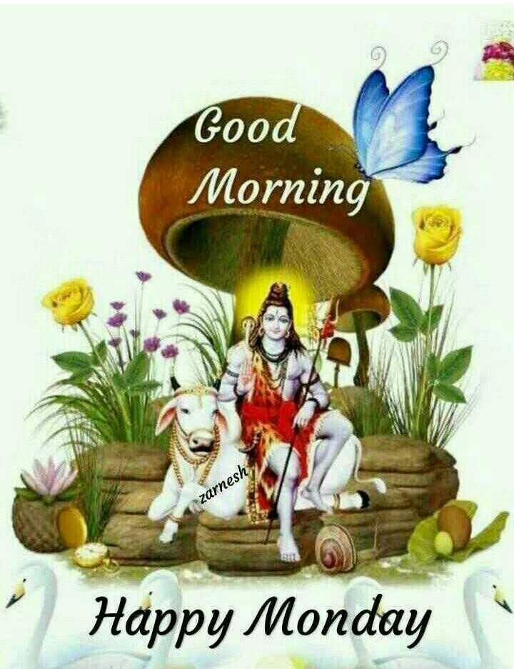 🌞Good Morning🌞 - Good Morning zarnesh Happy Monday - ShareChat