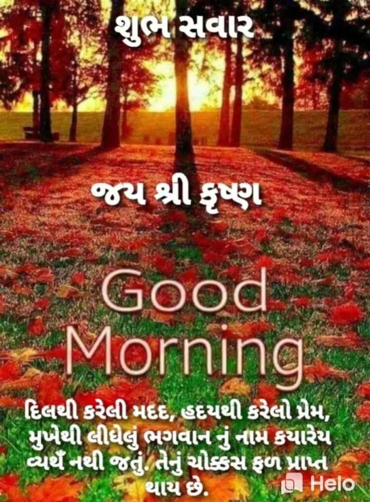 🌅 Good Morning - શાબ સવાર જય શ્રી કૃષ્ણ Good - Morning   દિલથી કરેલી મદદ , હદયથી કરેલો પ્રેમ , મુખેથી લીધેલું ભગવાનનું નામ કયારેય વ્યર્થે નથી જતું તેનું ચોકકસ ફળ પ્રાપ્ત પાક થાય છે . I - ShareChat