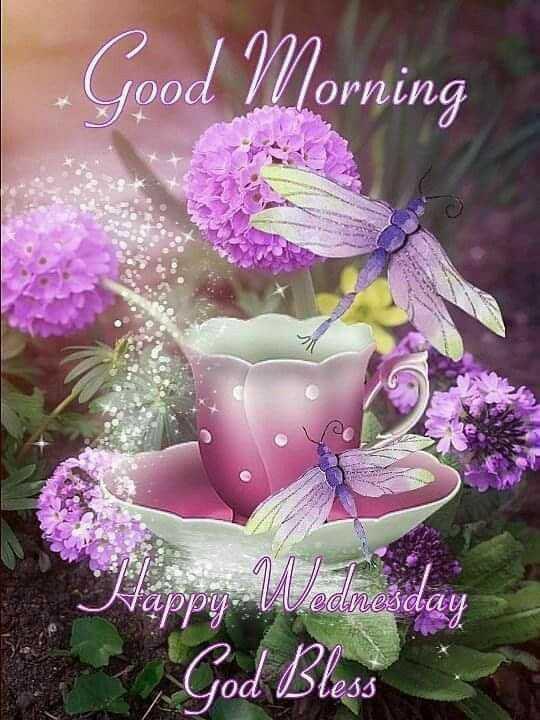 🌞Good Morning🌞 - Good Morning Happy Wednesday God Bless od bless - ShareChat