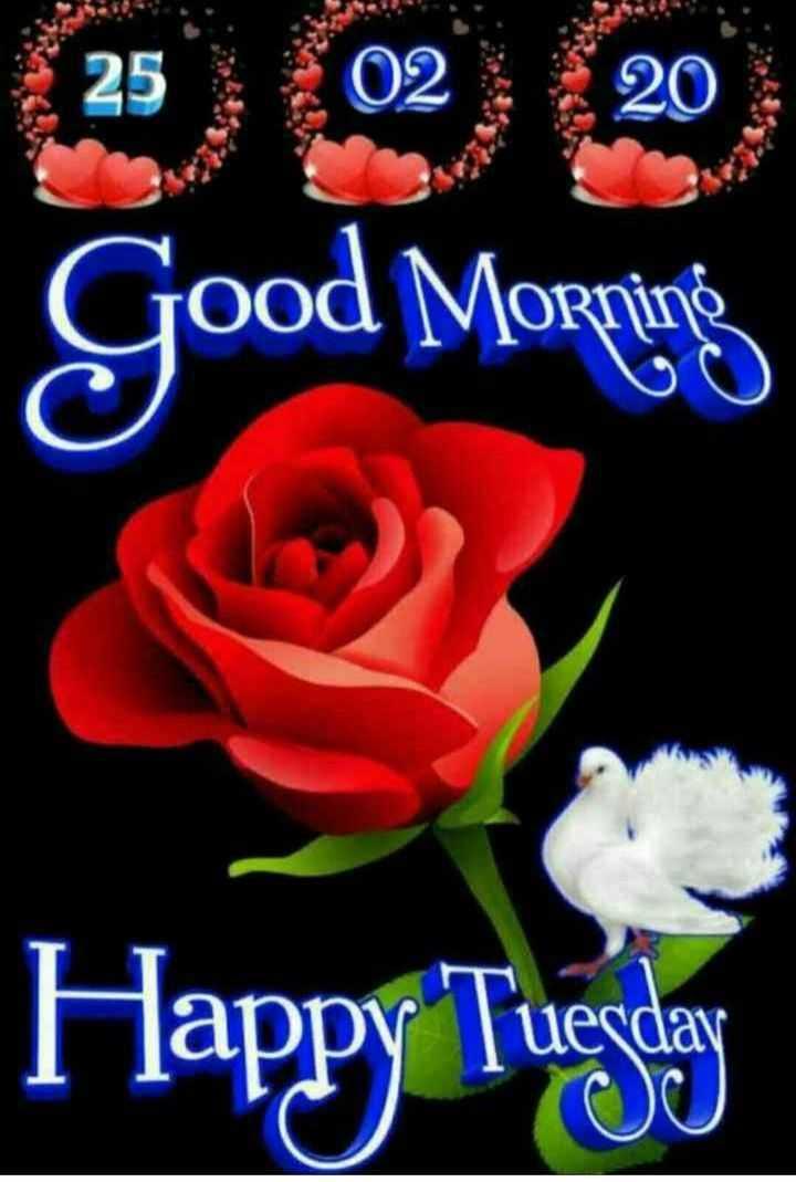 🌞 Good Morning🌞 - Good Morning OOO Happy Toga uerday - ShareChat