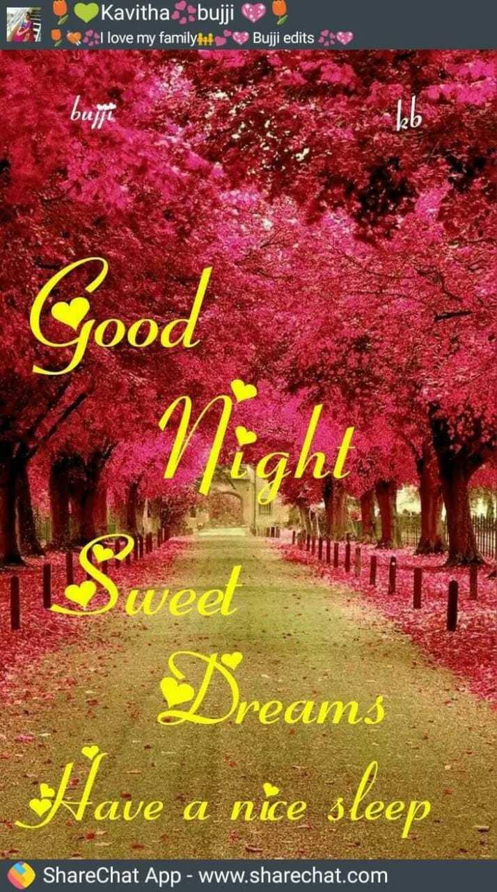 Good Night - Nuh Kavitha bujji I love my family : Buji edits : bull Cood Tweet reams Have a nice sleep ShareChat App - www . sharechat . com - ShareChat