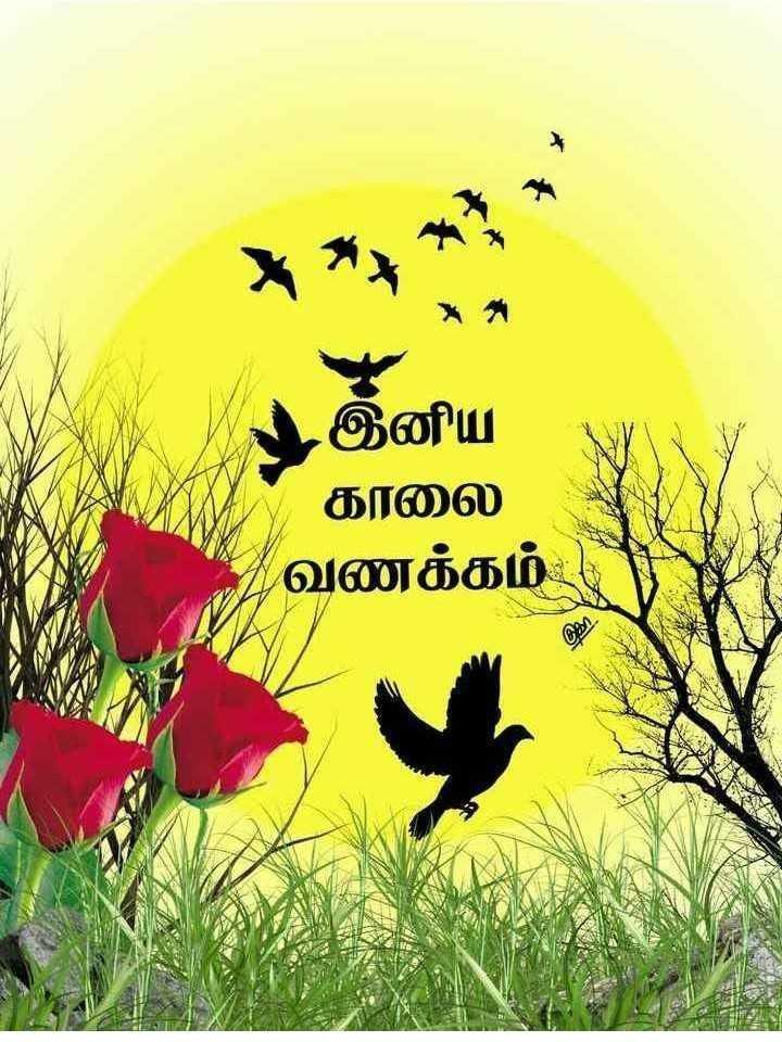 Good morning - இனிய காலை வணக்கம் - ShareChat