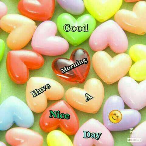 Good morning - Good Morning Have Nice Day MOMENT - ShareChat