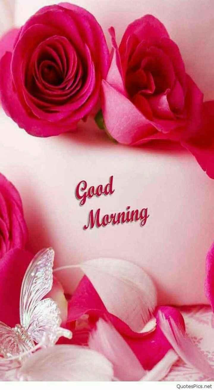 Good morning 🍫 - Good Morning QuotesPics . net - ShareChat