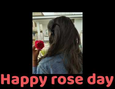 🌹Happy Rose Day - Happy rose day - ShareChat