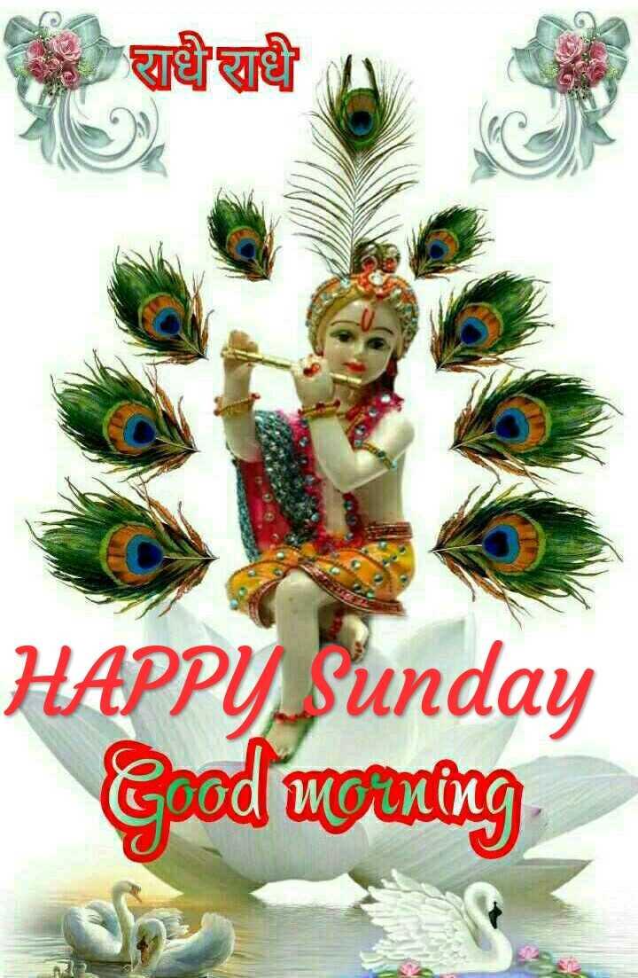 Happy Sunday - ee HAPPY Sunday Good morning - ShareChat
