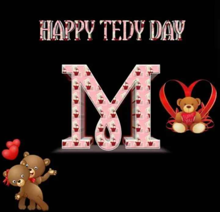 🧸Happy Teddy Day🧸 - HAPPY TEDY DAY - ShareChat