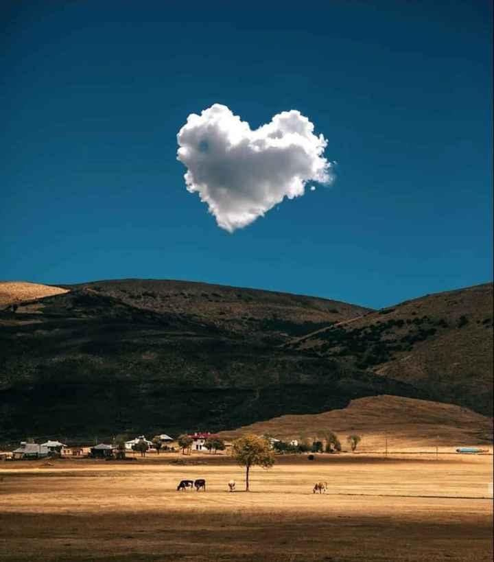 💖Happy Valentine Day💖 - ShareChat