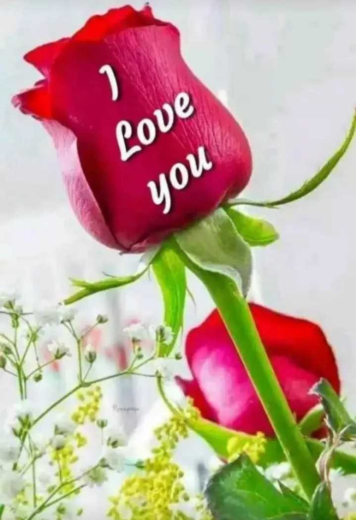 I LOVE YOU - Love you - ShareChat
