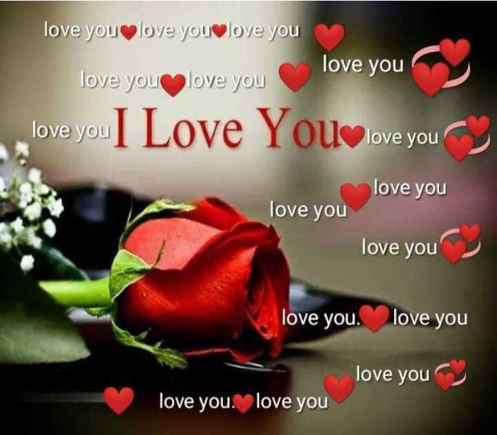 🌹 I Love You - love you love you love you love you love you love you love you love you I Love You love you love you love you love you love you love you love you love you love you love you - ShareChat