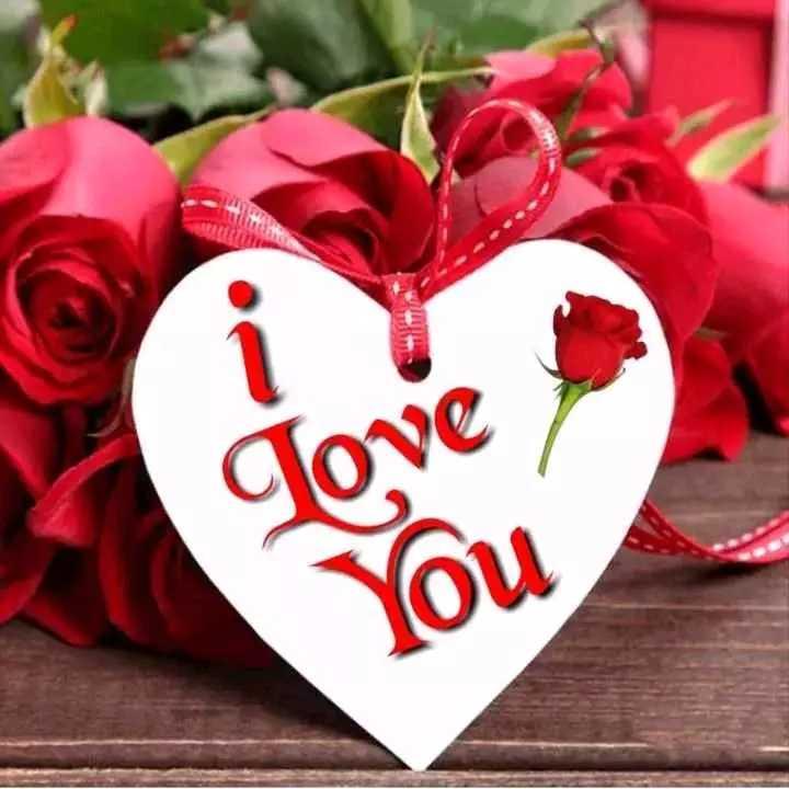 🌹 I Love You - Jove - ShareChat