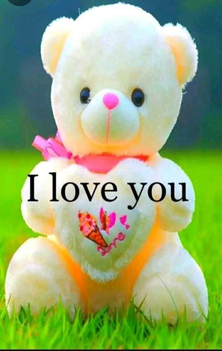 I love you - I love you - ShareChat