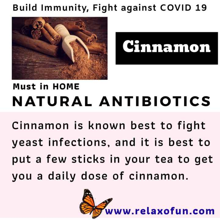 📜 Information - Build Immunity , Fight against COVID 19 Cinnamon Must in HOME NATURAL ANTIBIOTICS Cinnamon is known best to fight yeast infections , and it is best to put a few sticks in your tea to get you a daily dose of cinnamon . www . relaxofun . com - ShareChat