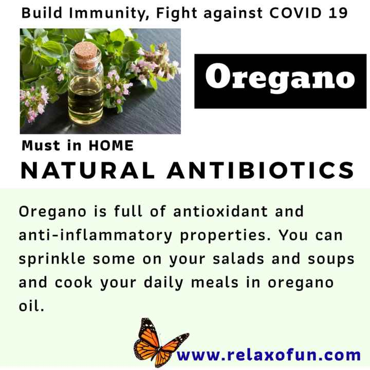 📜 Information - Build Immunity , Fight against COVID 19 Oregano Must in HOME NATURAL ANTIBIOTICS Oregano is full of antioxidant and anti - inflammatory properties . You can sprinkle some on your salads and soups and cook your daily meals in oregano oil . www . relaxofun . com - ShareChat