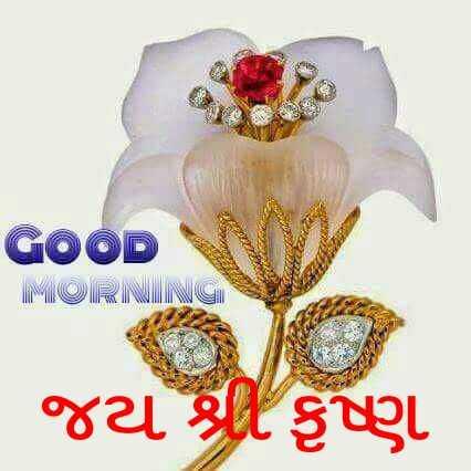 Jay shree krishna - GOOD MORNING . જય શ્રી કૃષ્ણ - ShareChat