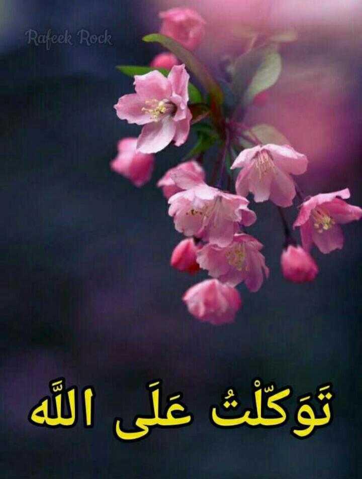 🕋 Juma mubarak..🕋🕌🌙 - Rajeek Rock \ 3 توكلت على الله و - ShareChat