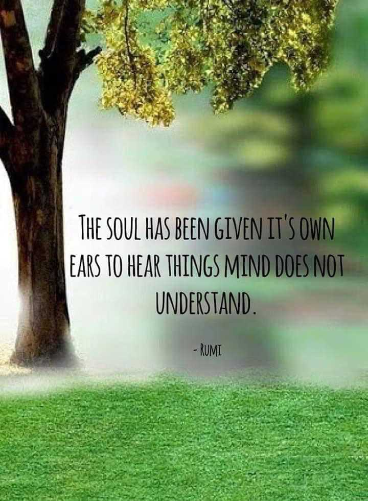 Monday Motivation - THE SOUL HAS BEEN GIVEN IT ' S OWN EARS TO HEAR THINGS MIND DOES NOT UNDERSTAND . - RUMI - ShareChat