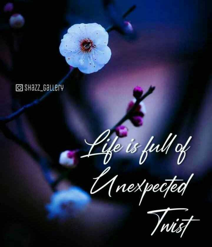👍 Monday Motivation - O Shazz _ Gallery Life is full of Unexpected Twist - ShareChat