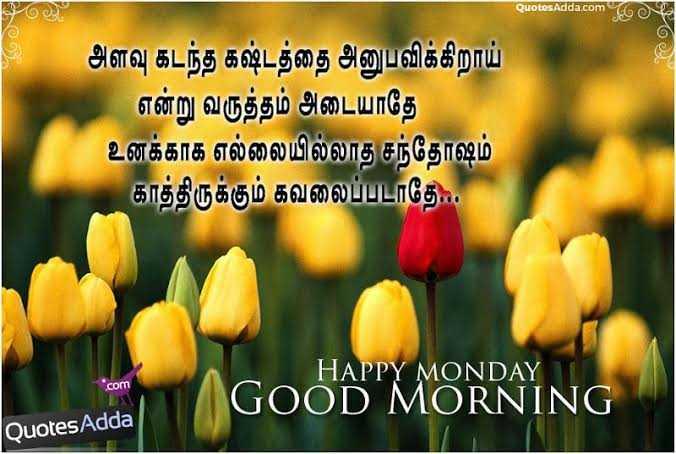 👍 Monday Motivation - QuotesAdda . com ஓடு . அளவு கடந்த கஷ்டத்தை அனுபவிக்கிறாய் என்று வருத்தம் அடையாதே உனக்காக எல்லையில்லாத சந்தோஷம் காத்திருக்கும் கவலைப்படாதே . . com HAPPY MONDAY GOOD MORNING Quotes Adda - ShareChat